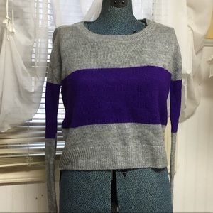 Aeropostale Purple and Grey Sweater Chloe Moretz